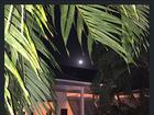 Bruna Marquezine e Marlon Teixeira admiram lua e trocam declarações