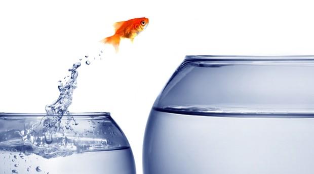40 frases de motivação para empreendedores – parte 2