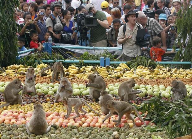 Turistas observam macacos se alimentando durante celebração em província tailandesa (Foto: Chaiwat Subprasom/Reuters)