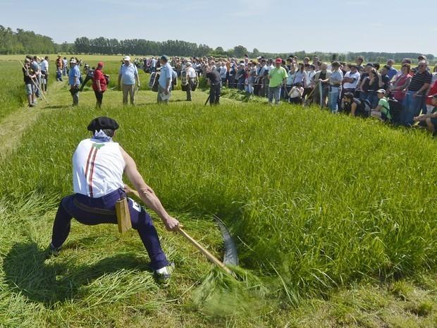 Em maio deste ano, 231 competidores de sete países usaram uma foice para cortar a grama durante a Copa do Mundo da Ceifa 2012. O evento ocorreu em Salbitz, na Alemanha. (Foto: Jens Meyer/AP)
