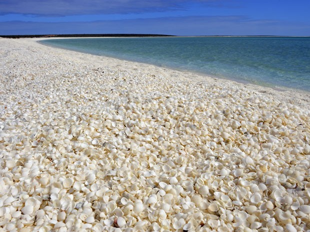 Praia das Conchas, na Austrália (Foto: Anne Montfort / Photononstop/ AFP)