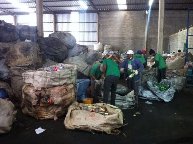 Emprego em cooperativas de reciclagem atrai trabalhadores  (Foto: Moisés Soares/TV TEM)