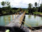 Suspensão de fornecimento de água em 4 cidades afeta 173 mil pessoas