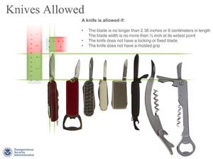 Panfleto da TSA mostra o que será permitido ou não nos voos internos nos EUA (Foto: AP Photo/TSA)