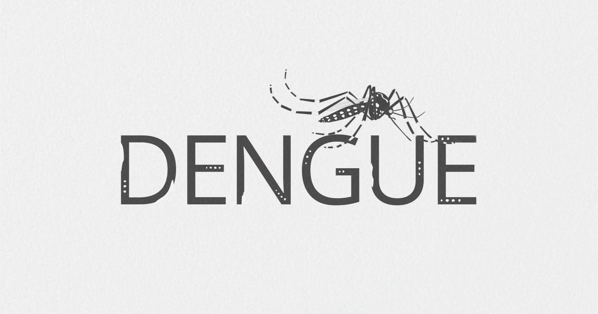 Cientistas criam classe de inseticidas que pode controlar o Aedes aegypti