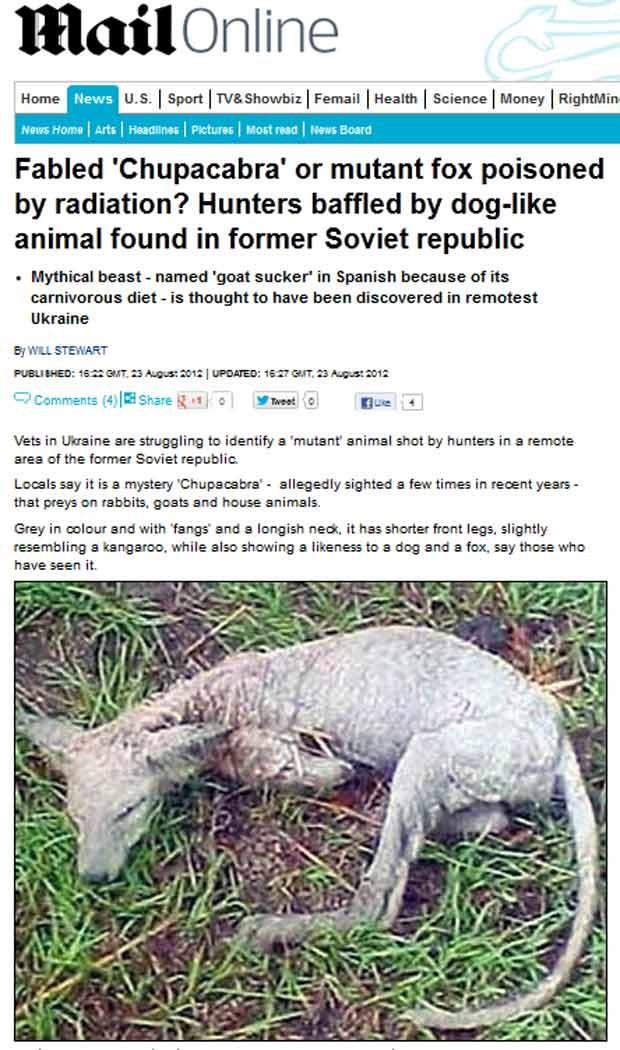 Criatura morta por caçadores já teria matado cabras, coelhos e animais domésticos, segundo moradores (Foto: Reprodução)
