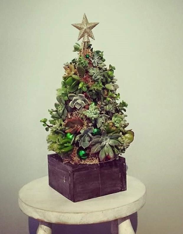árvore-natal-suculentas (Foto: Reprodução / Instagram)