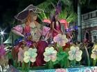 Cerca de 20 mil pessoas participaram do carnaval de Corumbá, MS