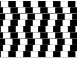 Imagem enviada por físicos dá exemplo de ilusão de ótica: linhas tortas ou retas?