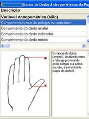 Globo Universidade: INT - Banco de Dados - Medidas Antropométricas (Foto: Divulgação)