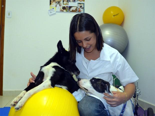 """""""O Happy nunca gostou de nenhum cachorro, mas a afinidade com ela foi imediata"""", disse veterinária (Foto: Eduardo Guidini/ G1)"""