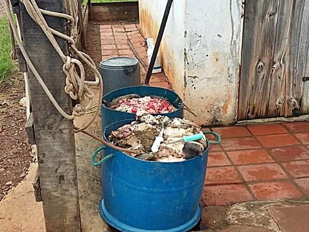 Carnes eram vendidas à supermercados e açougues de Taguaí (Foto: Divulgação/Polícia Civil de Taguaí)
