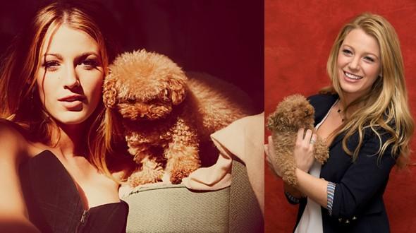 Blake Lively adora levar sua cadela Penny às gravações (Foto: .)