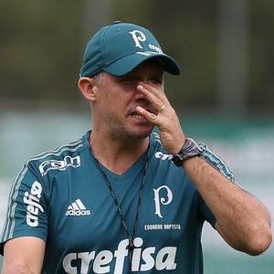 Eduardo Baptista, técnico do Palmeiras (Foto: César Greco / Ag. Palmeiras / Divulgação)