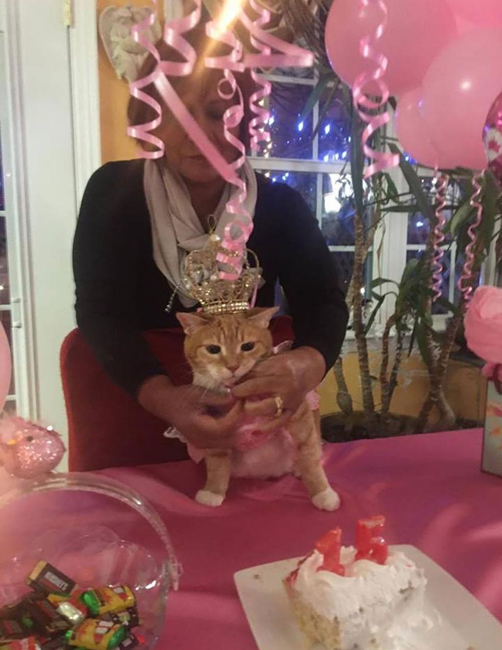 Gatinha faz 15 anos e ganha festa de debutante nos EUA (Foto: Quinceañera Cat/Facebook)