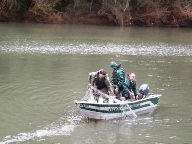 Redes Foram Retiradas Do Rio Peixe Em Luzerna Foto PMA Divulgao