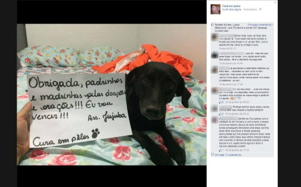Postagem na web agredeceu doações para a Jujuba (Foto: Reprodução/Facebook)