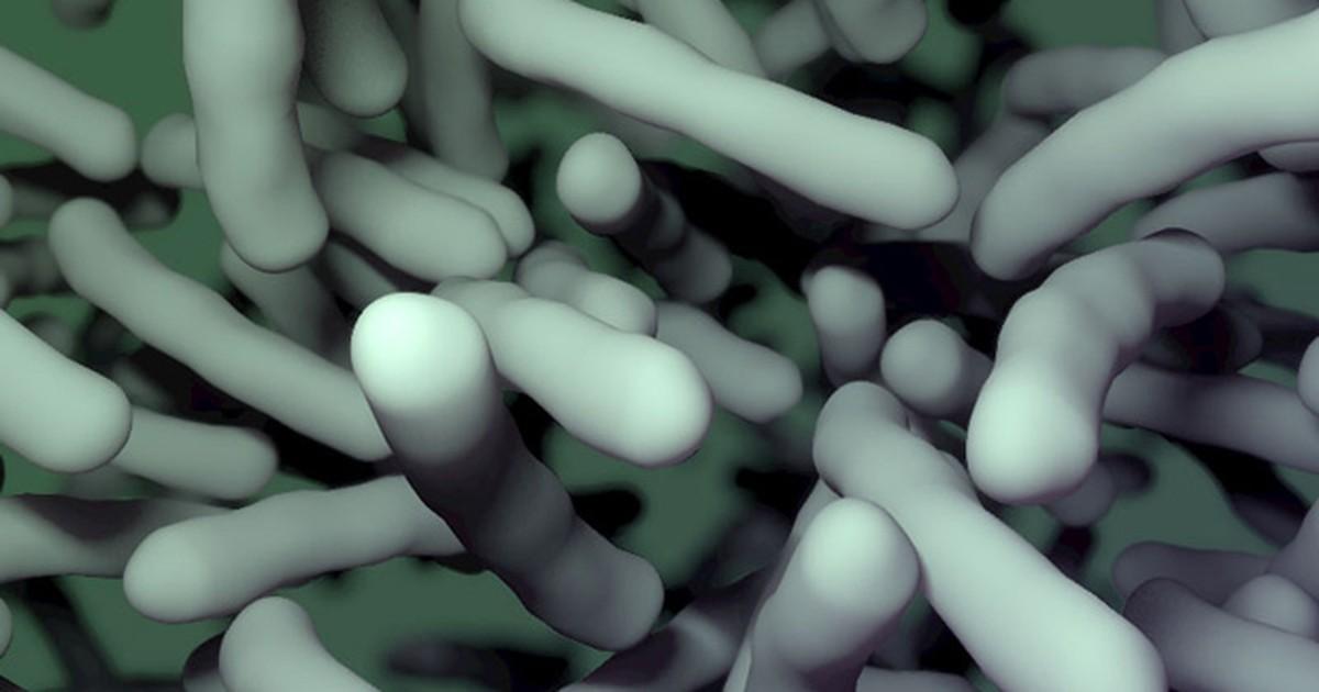Tratamento alternativo para infecção mortal se mostra eficaz, diz estudo