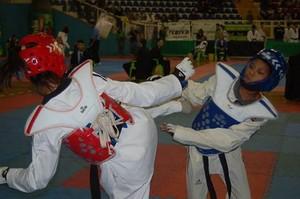 Brasileiro de taekwondo em Londrina (Foto: Divulgação/CBTKD)