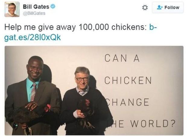 """Bill Gates lançou campanha nesta semana; no Twiter, postou: """"Me ajude a doar 100 mil galinhas""""  (Foto: Reprodução Twitter)"""