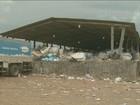 Falta de estrutura reduz eficiência da coleta de recicláveis em Piracicaba