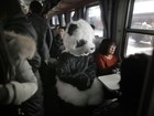 Mulher viaja fantasiada de panda na China