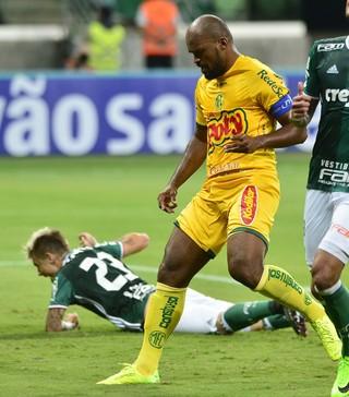 Palmeiras Mirassol  (Foto: Marcos Ribolli)