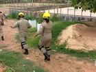 Homens atiram contra bombeiros que tentavam resgatar criança no PI