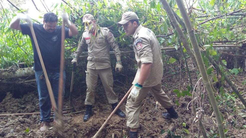 Bombeiros e policiais civis fizeram escavação em Rio Branco  (Foto: Divulgação/Corpo de Bombeiros)