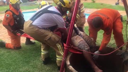 Tampa de cisterna cede e mulher despenca de 30 m em chácara no DF; vídeo