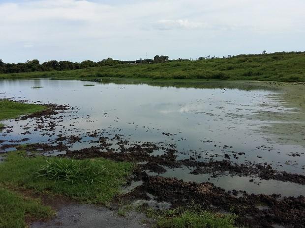 Lagoa de dejetos que se formou com o despejo de efluentes em área sem impermeabilização em São Gabriel do Oeste (Foto: Divulgação/PMA)