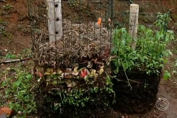 Projeto quer ampliar a compostagem do lixo para comerciantes em Visconde de Mauá (Foto: Bom Dia Rio)