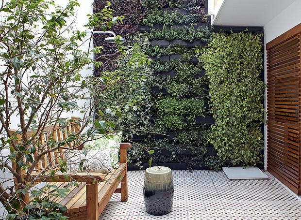 jardim-vertical-suspenso-paisagismo-chuveirão-arquiteta-daniela-ruiz- peperômias-lambaris-heras (Foto: Victor Affaro/Editora Globo)