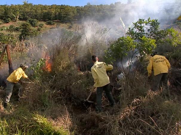 O grupo procurou o corpo de bombeiros da cidade para fazer um treinamento para que eles pudessem atuar no combate aos incêndios  (Foto: Globo)