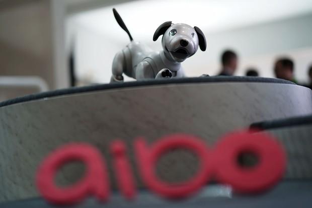 O Aibo, da Sony. Será que a moda dos cães mecânicos vinga dessa vez? (Foto: Alex Wong/Getty Images)