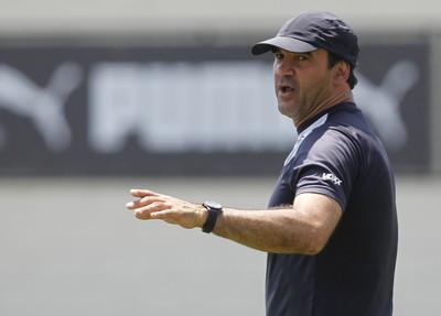 Ricardo Gomes Botafogo (Foto: Vitor Silva / SSPress)