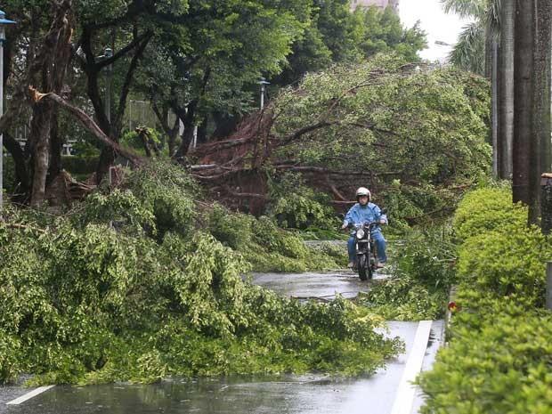 Motociclista dirige entre árvores arrancadas ventos do tufão (Foto: Pichi Chuang / Reuters)