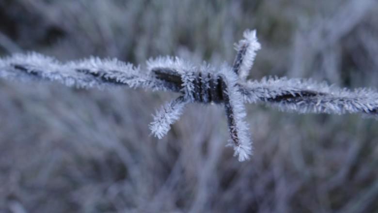 frio-geada-temperatura-previsao-do-tempo-urupema (Foto: Marília Oliveira/Prefeitura de Urupema)