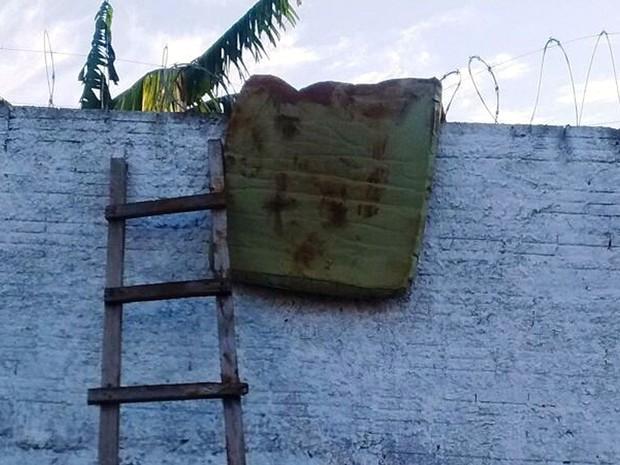 Presos cavaram túnel, pularam muro fugiram de cadeia pública em Rosário Oeste (Foto: Divulgação/Sindspen-MT)