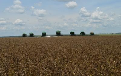 Abertura da colheita da soja em Mato Grosso do Sul; área utilizada pela agricultura representa apenas 8% do território nacional (Foto: Anderson Viegas/G1 MS)