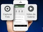 Maranhenses podem denunciar crimes eleitorais por app de celular