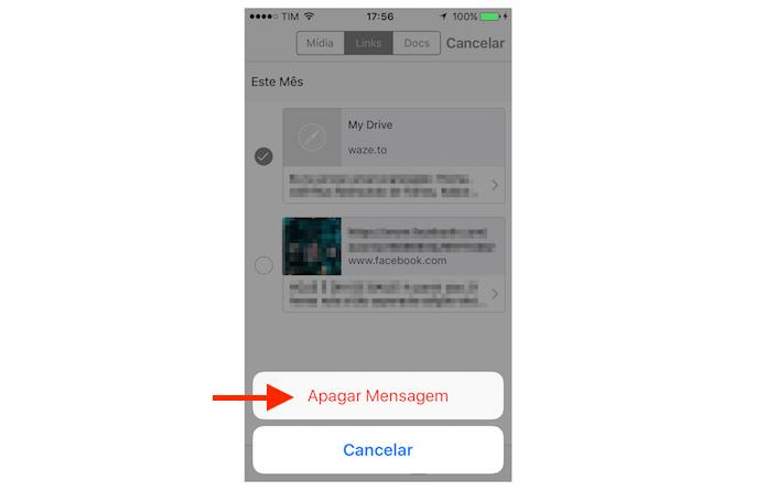 Deletando links recebidos no WhatsApp para iPhone (Foto: Reprodução/Marvin Costa)