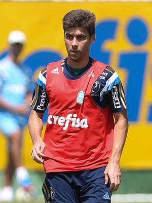 Fellype Gabriel Palmeiras (Foto: Cesar Greco / Ag. Palmeiras / Divulgação)