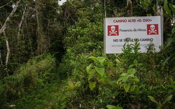 O caminho de El Oso, um dos campos mapeados pela iniciativa de desminado humanitário. A mata fechada e a ausência de registros sobre a localização das minas impede sua descontaminação completa. (Foto: Rios Escobar/ÉPOCA)