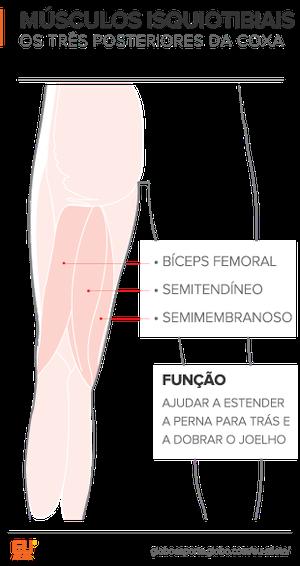 euatleta info músculos posteriores coxa (Foto: Eu Atleta)