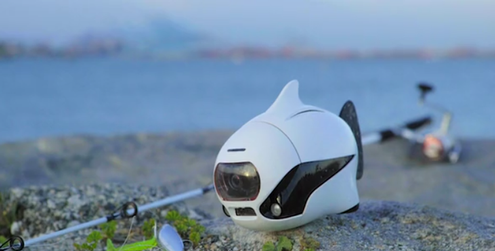 Drone subaquático foi projetado para proteger o meio ambiente e preservar a biosfera (Foto: Divulgação/Robosea)