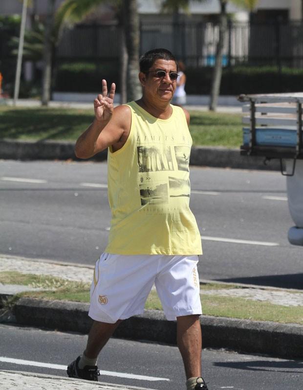 Zeca Pagodinho (Foto: Dilson Silva/AgNews)