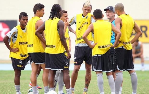 Oswaldo de Oliveira, Botafogo (Foto: Ivo Gonzalez / Agência O Globo)