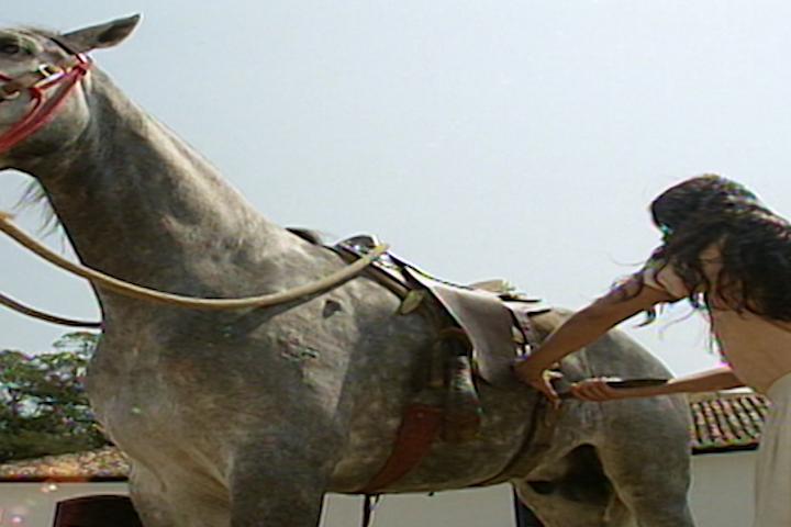 Luzia provoca um acidente de cavalo com Malu (Foto: reproduo/viva)