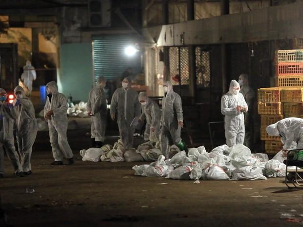 Funcionários do governo chinês sacrificam aves em medida sanitária para conter avanço do vírus da gripe aviária H7N9. (Foto: AFP)